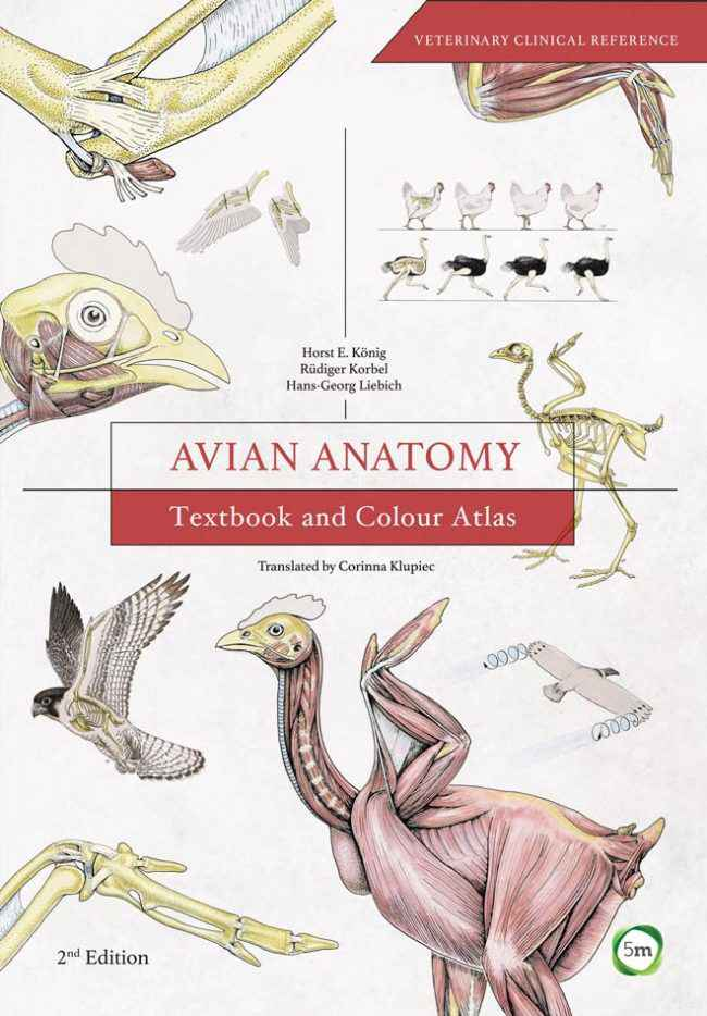 Avian Anatomy Textbook And Colour Atlas 2nd Edition Www.veterinarydiscussions.net