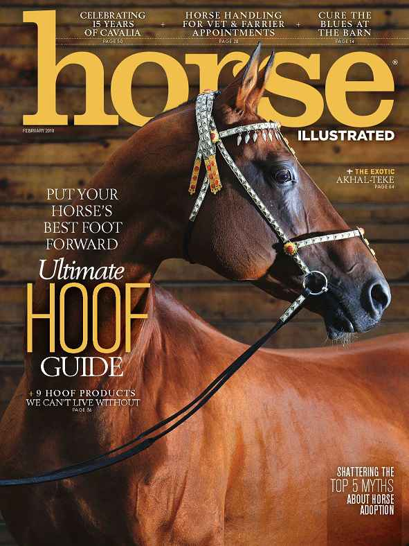 Horse Illustrated Magazine February 2018 PDF