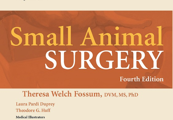 Small Animal Surgery 4th Edition By Theresa Welch Fossum Pdf 2