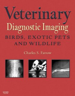 Veterinary Diagnostic Imaging Birds, Exotic Pets And Wildlife PDF Download