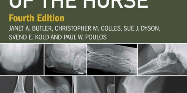 Clinical Radiology Of The Horse 4th Edition 660x330.jpg
