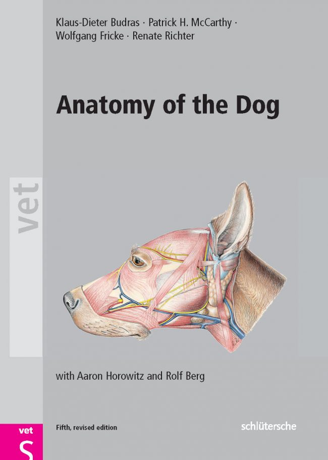 Anatomy Of The Dog Fifth Edition PDF