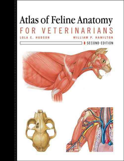 Atlas Of Feline Anatomy For Veterinarians 2nd Edition PDF