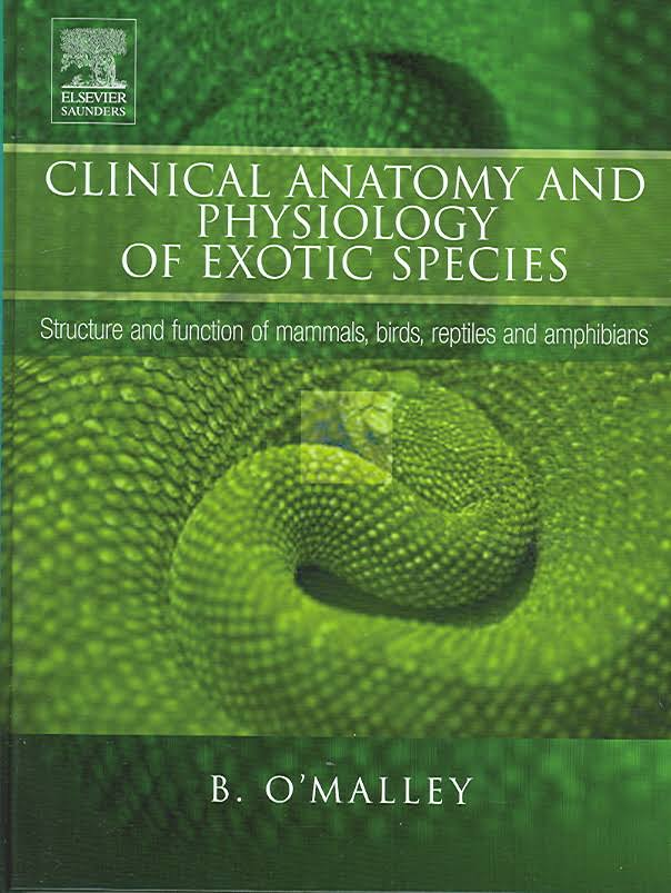 Clinical Anatomy And Physiology Of Exotic Species 1st Edition PDF