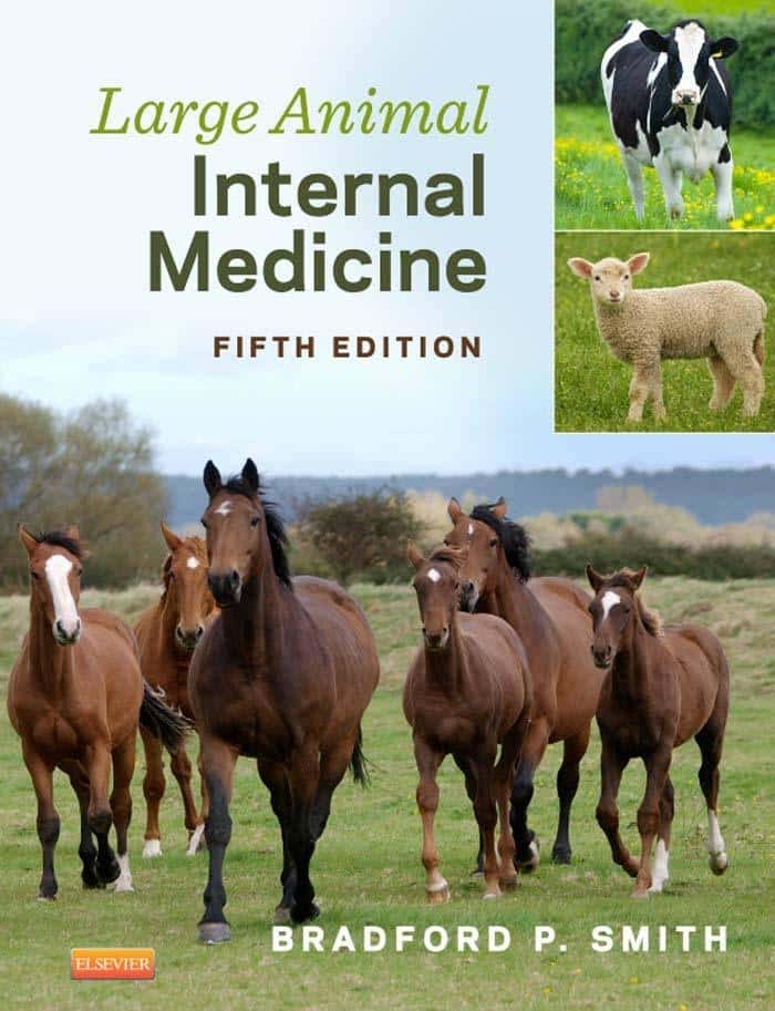 Large Animal Internal Medicine PDF