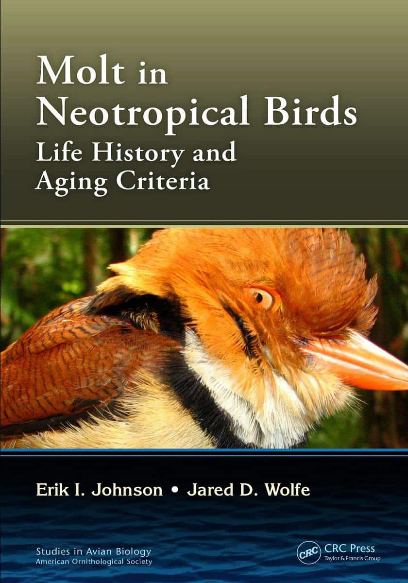 Molt In Neotropical Birds Life History And Aging Criteria PDF