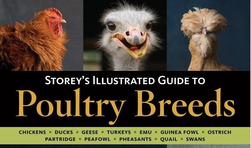 Storeys Illustrated Guide To Poultry Breeds Complete PDF