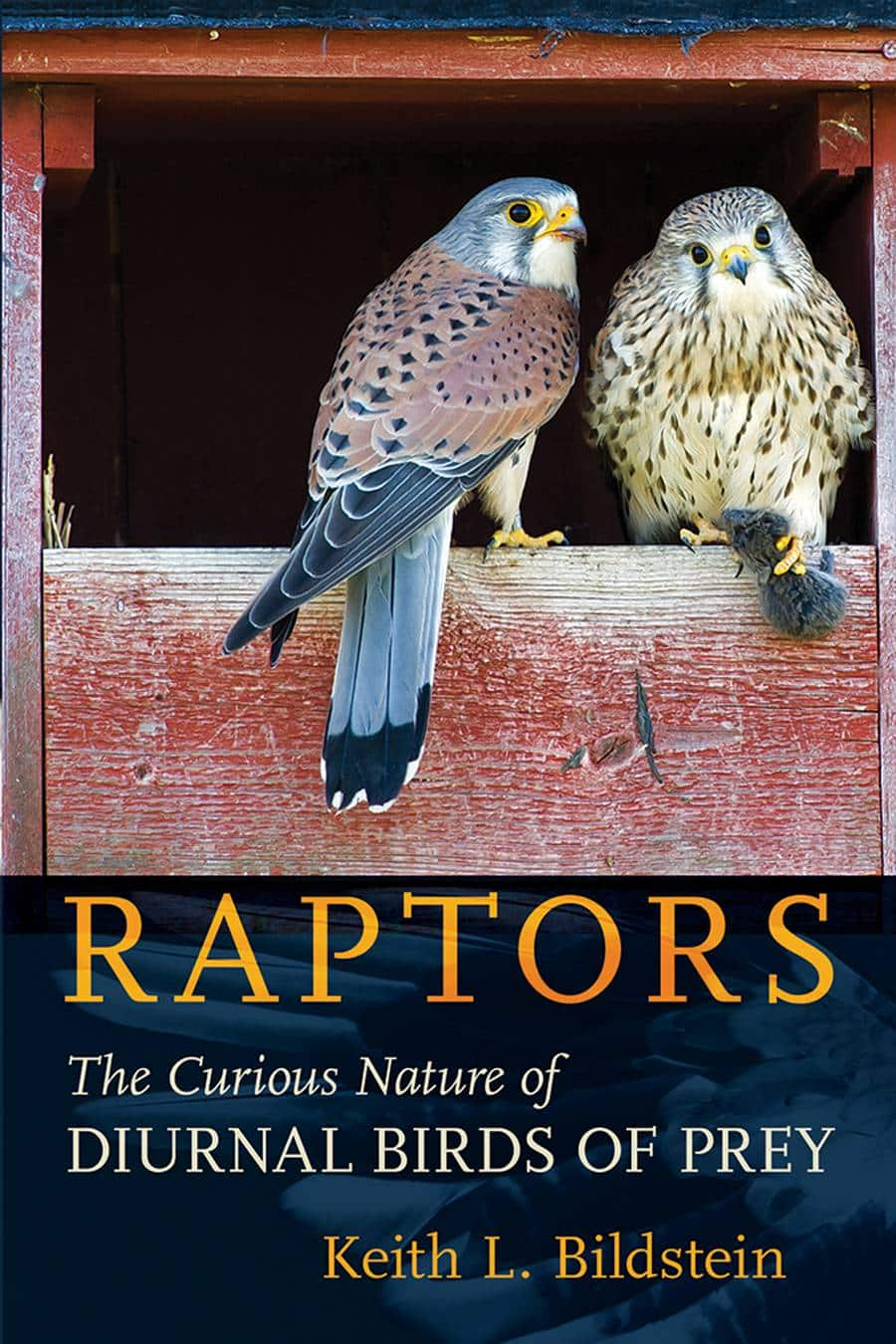 Raptors The Curious Nature Of Diurnal Birds Of Prey PDF