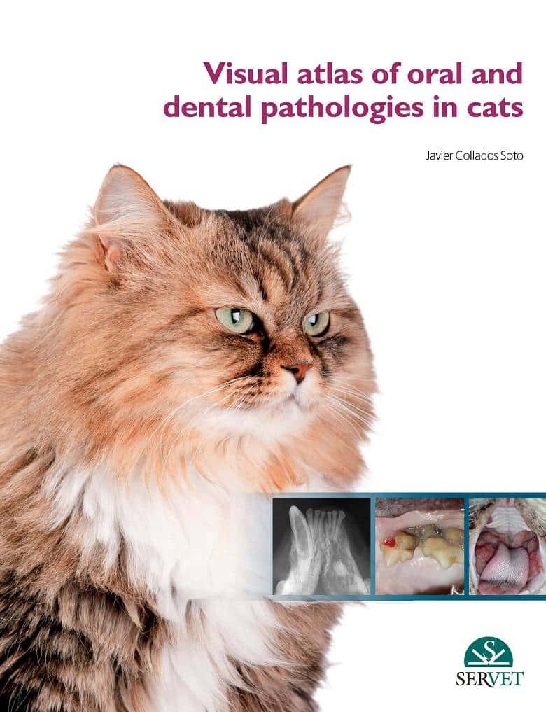 Visual Atlas Of Oral And Dental Pathologies In Cats PDF