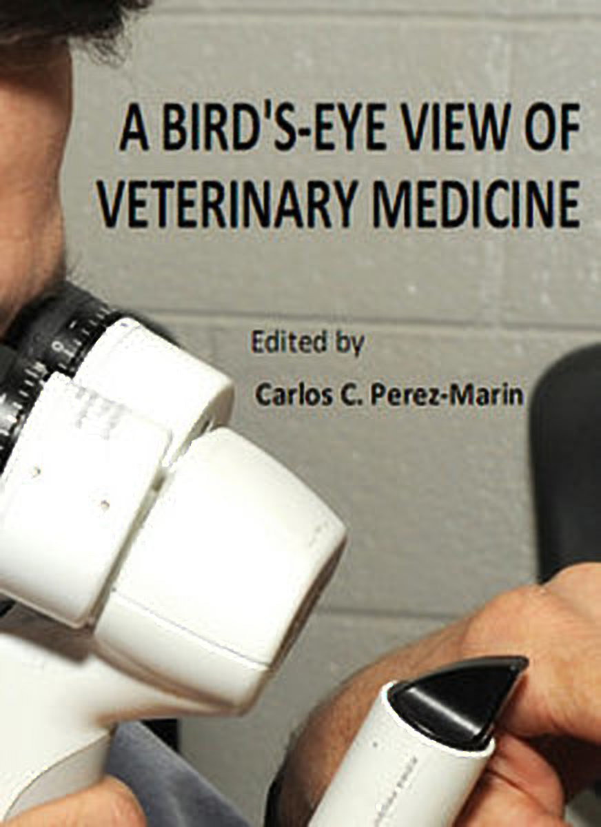 A Bird's Eye View Of Veterinary Medicine