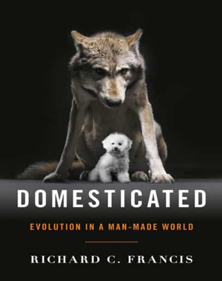 Domesticated Evolution In A Man Made World