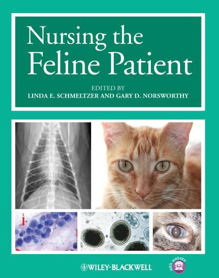 Nursing The Feline Patient