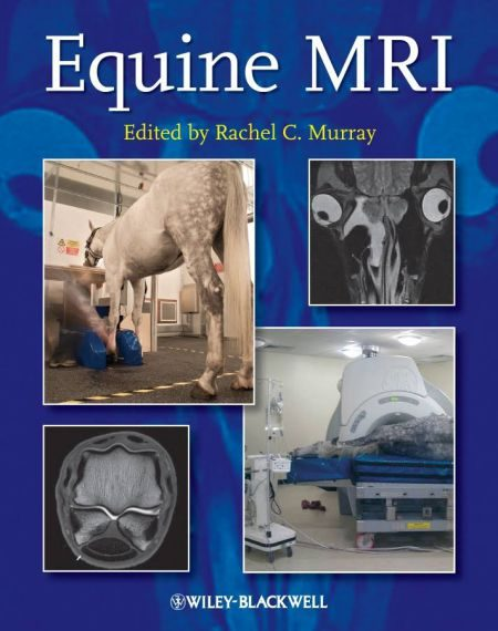 Equine MRI 1st Edition
