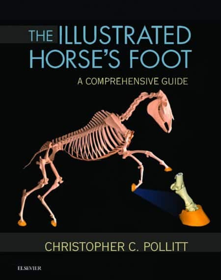 The Illustrated Horse's Foot A Comprehensive Guide