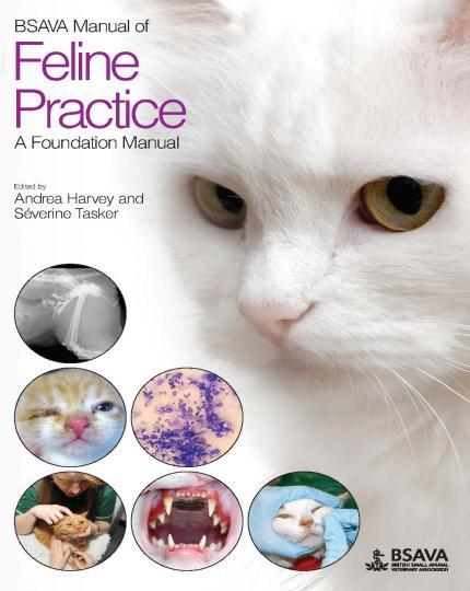 Feline Practice, A Foundation Manual