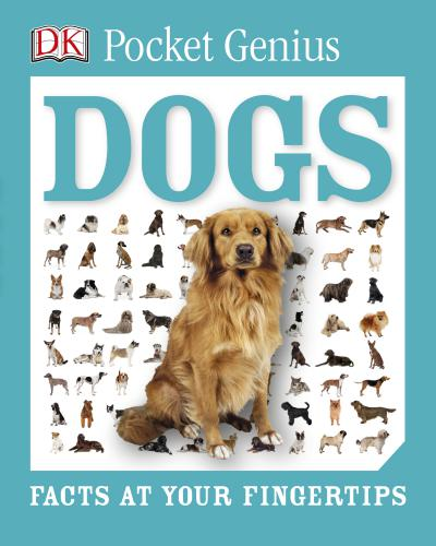 Dogs Facts At Your Fingertips