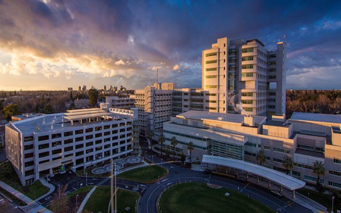 Top Veterinary Schools Near You University Of California, Davis (UCD)