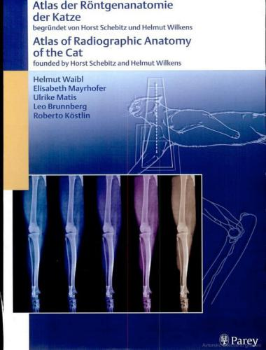 Atlas Of Radiographic Anatomy Of The Cat