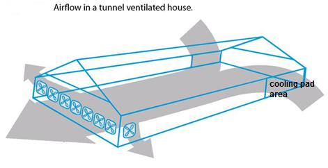 Calculation of Poultry House Ventilation