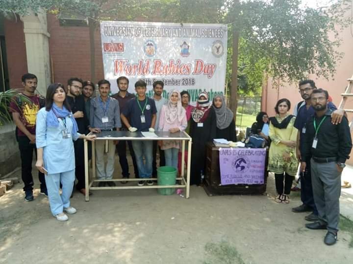Importance of World Rabies Day 1