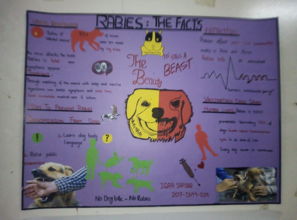 Poster Competition World Rabies Day 3