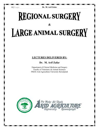 Regional Surgery Or Large Animal Surgery