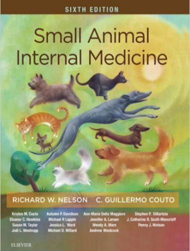 Small Animal Internal Medicine 6th Edition