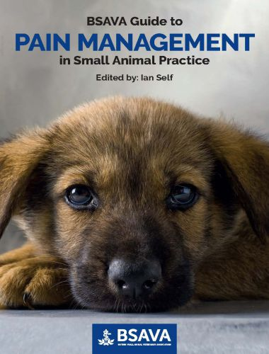 Guide To Pain Management In Small Animal Practice