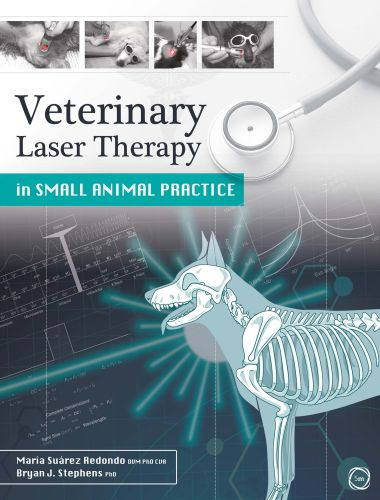 Veterinary Laser Therapy In Small Animal Practice