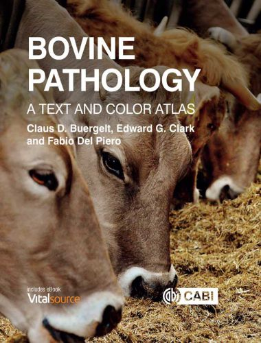 Bovine Pathology, A Text And Color Atlas