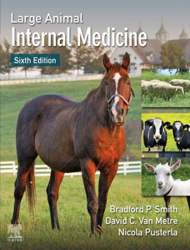 Large Animal Internal Medicine 6th Edition