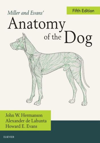 Miller And Evans Anatomy Of The Dog 5th Edition