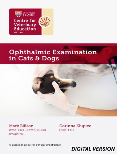 Ophthalmic Examination In Cats And Dogs MP4