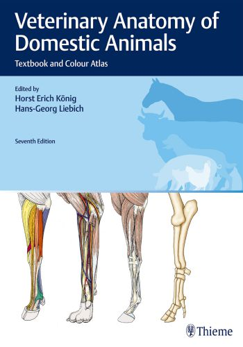 Veterinary Anatomy Of Domestic Animals 7th Edition