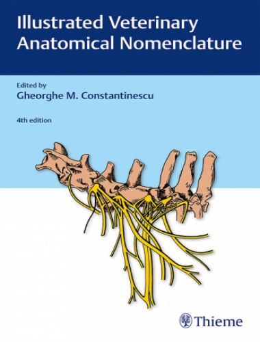 Illustrated Veterinary Anatomical Nomenclature, 4th Edition