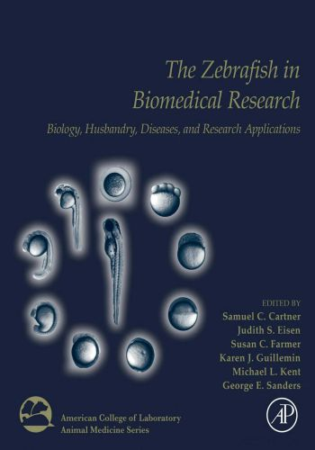 The Zebrafish In Biomedical Research Biology, Husbandry, Diseases, And Research Applications