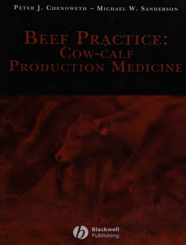 Beef Practice Cow Calf Production Medicine 1st Edition