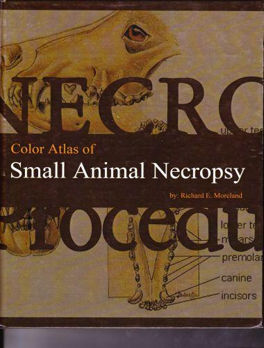 Color Atlas Of Small Animal Necropsy