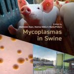 Mycoplasmas In Swine 1st Edition