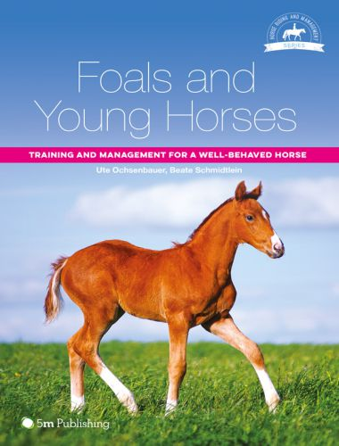 Foals And Young Horses, Training And Management For A Well Behaved Horse