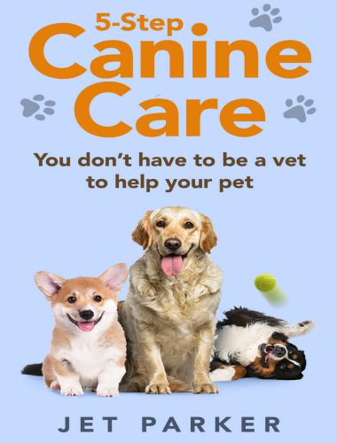 5 Step Canine Care, You Dont Have To Be A Vet To Help Your Pet