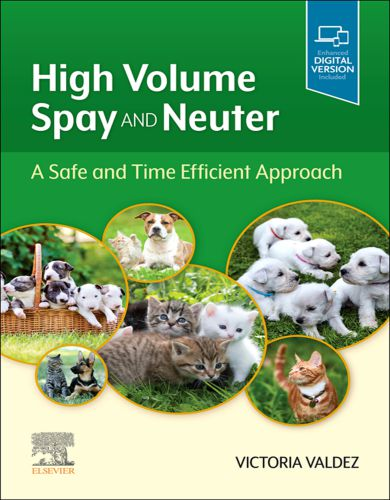 High Volume Spay And Neuter A Safe And Time Efficient Approach